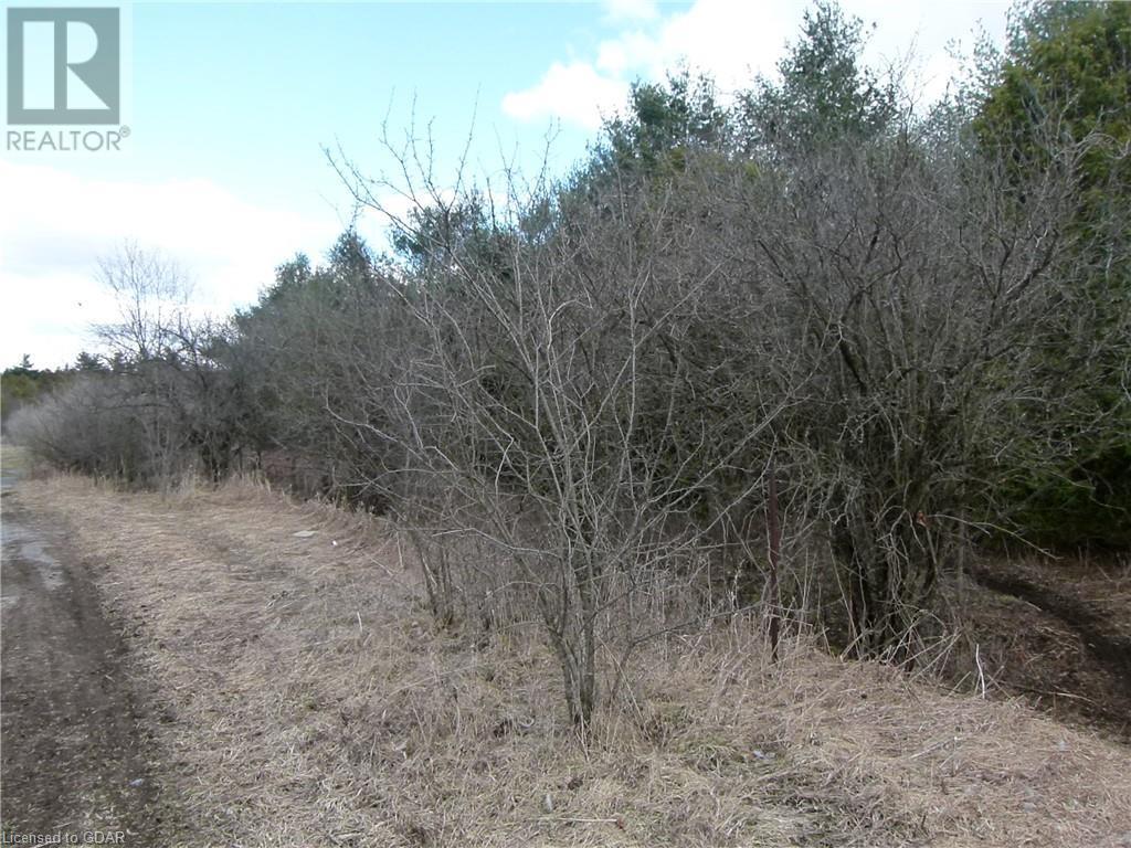 8256 Highway 7 Highway, Eramosa, Ontario N0B 2K0 - Photo 6 - 40090857